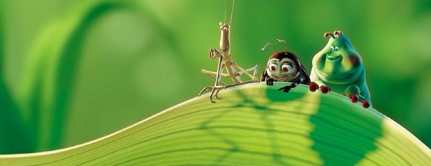 7EF – Invertebrados